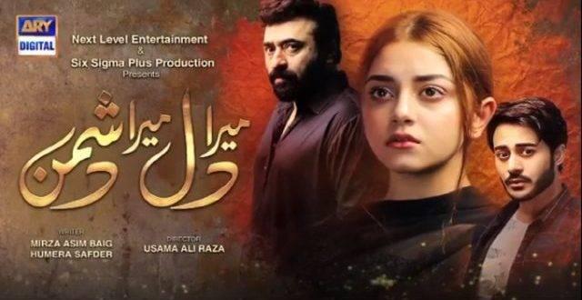 Drama Serial Mera Dil Mera Dushman Trendinginsocial