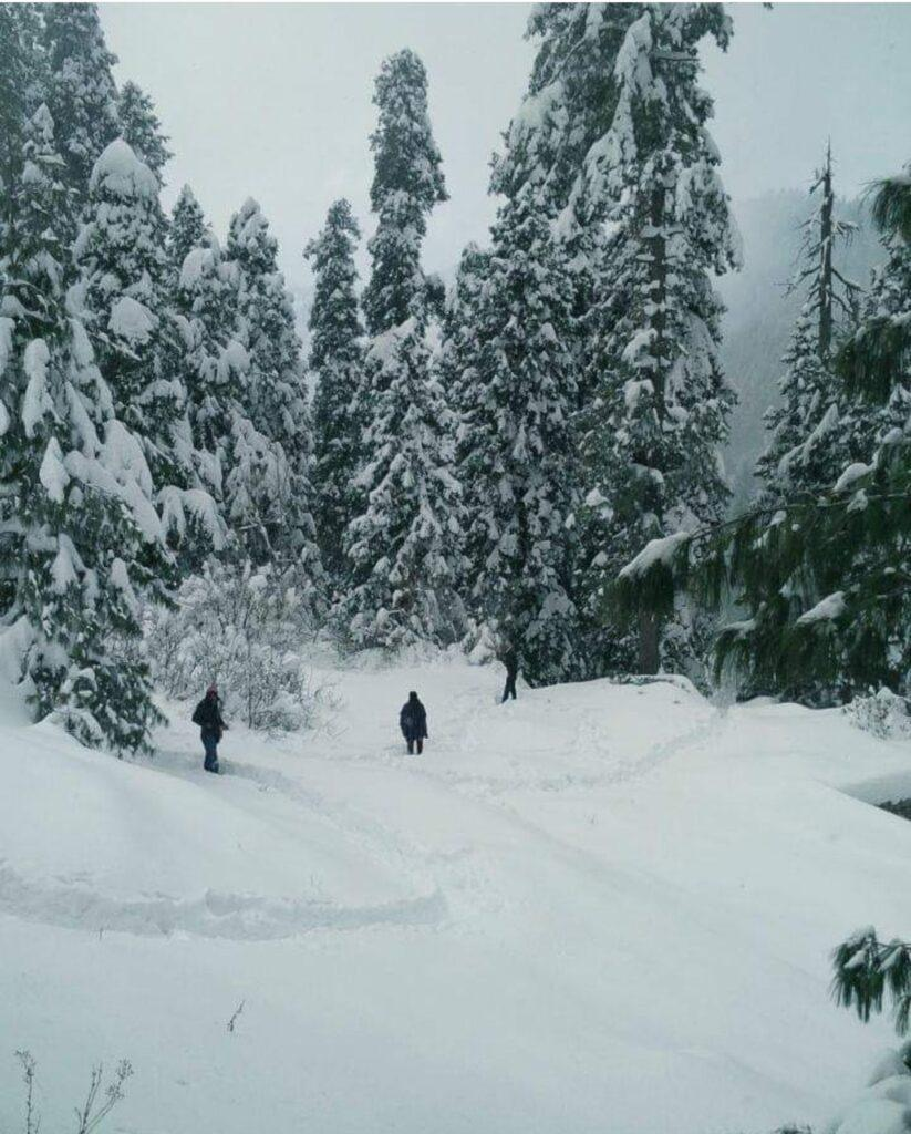 snowfall in Ayubia
