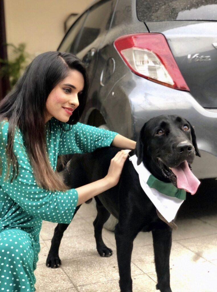 Ducky Bhai hammered with tweets after he roasted a girl celebrating Independence Day with her dog