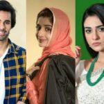 drama-serial-sabaat-to-go-on-air-from-today-1585465546-2858